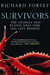 Survivors: The Animals and Plants that Time has Left Behind (Text Only) by Richard Fortey