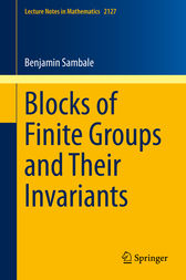 Blocks of Finite Groups and Their Invariants by Benjamin Sambale