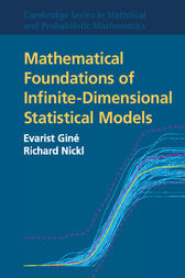 Mathematical Foundations of Infinite-Dimensional Statistical Models by Evarist Giné