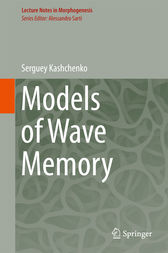Models of Wave Memory by Serguey Kashchenko