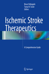 Ischemic Stroke Therapeutics by Bruce Ovbiagele
