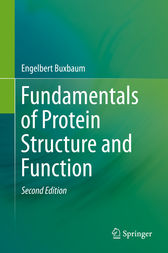 Fundamentals of Protein Structure and Function by Engelbert Buxbaum