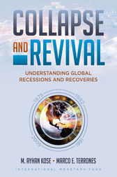 Collapse and Revival by Ayhan Kose