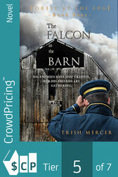 The Falcon in the Barn by Trish Mercer