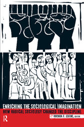 Enriching the Sociological Imagination by Rhonda F. Levine