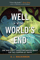 The Well at the World's End by A. J. Mackinnon