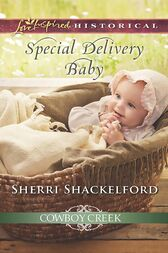 Special Delivery Baby (Mills & Boon Love Inspired Historical) (Cowboy Creek, Book 2) by Sherri Shackelford