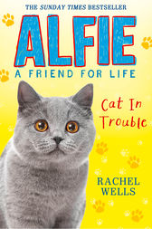 Alfie Cat In Trouble by Rachel Wells