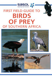First Field Guide to Birds of Prey of Southern Africa by David Allan