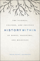 History Within by Marianne Sommer