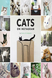 Cats on Instagram by @cats_of_instagram