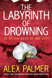 The Labyrinth of Drowning by Alex Palmer