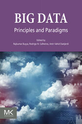 Big Data: Principles and Paradigms