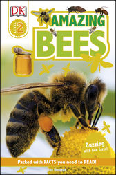 Amazing Bees: Buzzing with Bee Facts!