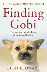 Finding Gobi (Main Edition): The True Story of a Little Dog and an Incredible Journey by Dion Leonard