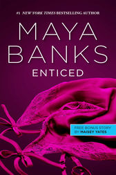 Enticed & A Game of Vows by Maya Banks