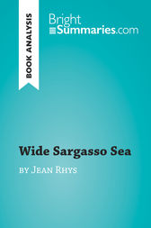Wide Sargasso Sea by Jean Rhys (Book Analysis): Detailed Summary, Analysis and Reading Guide
